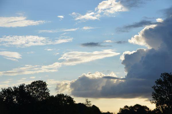 Jonge duiven gelost om 8.00 uur in Weert, met een brede glimlach en kleine traan....